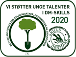 DM i skills