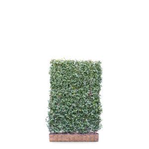 Grøn afskærmning fra Mobilane